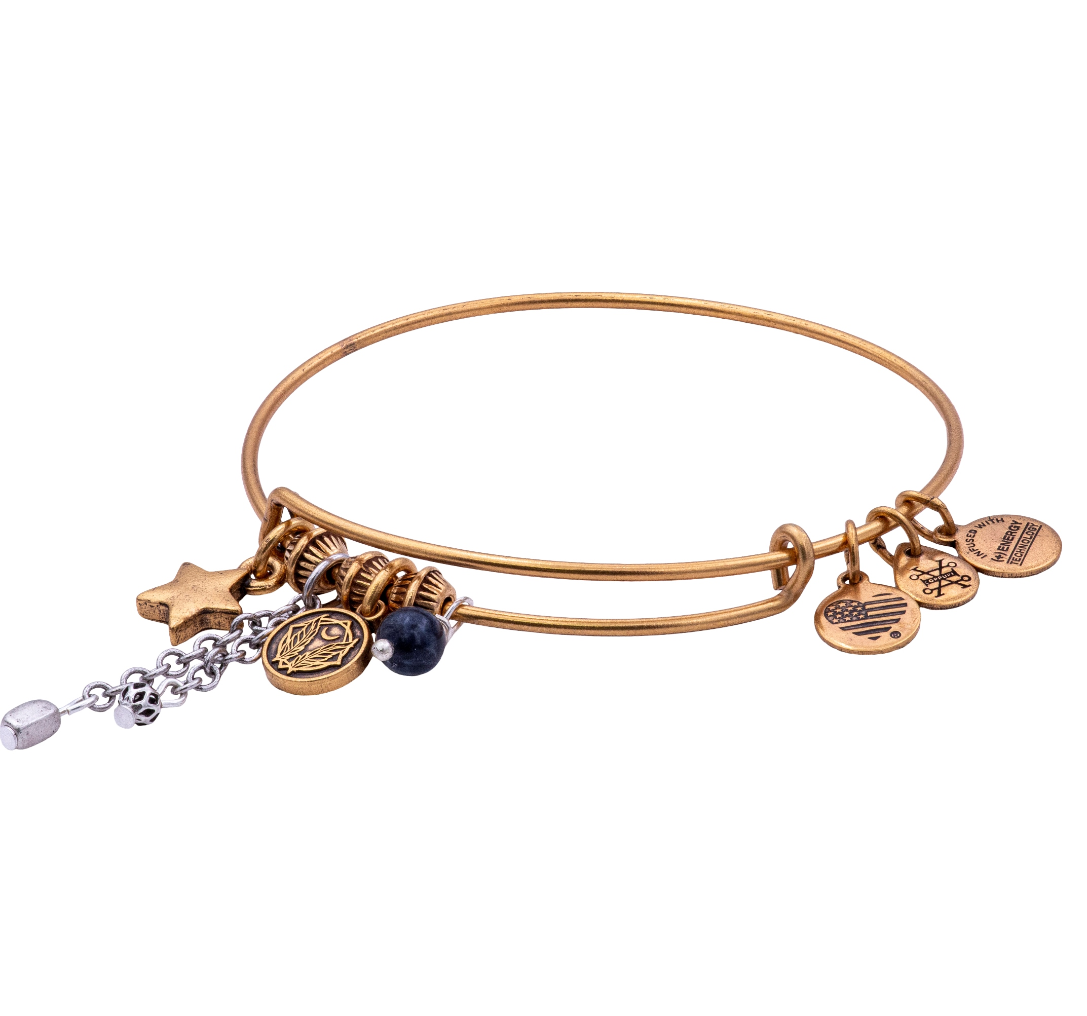 Alex and Ani A19EBCM02TTRG