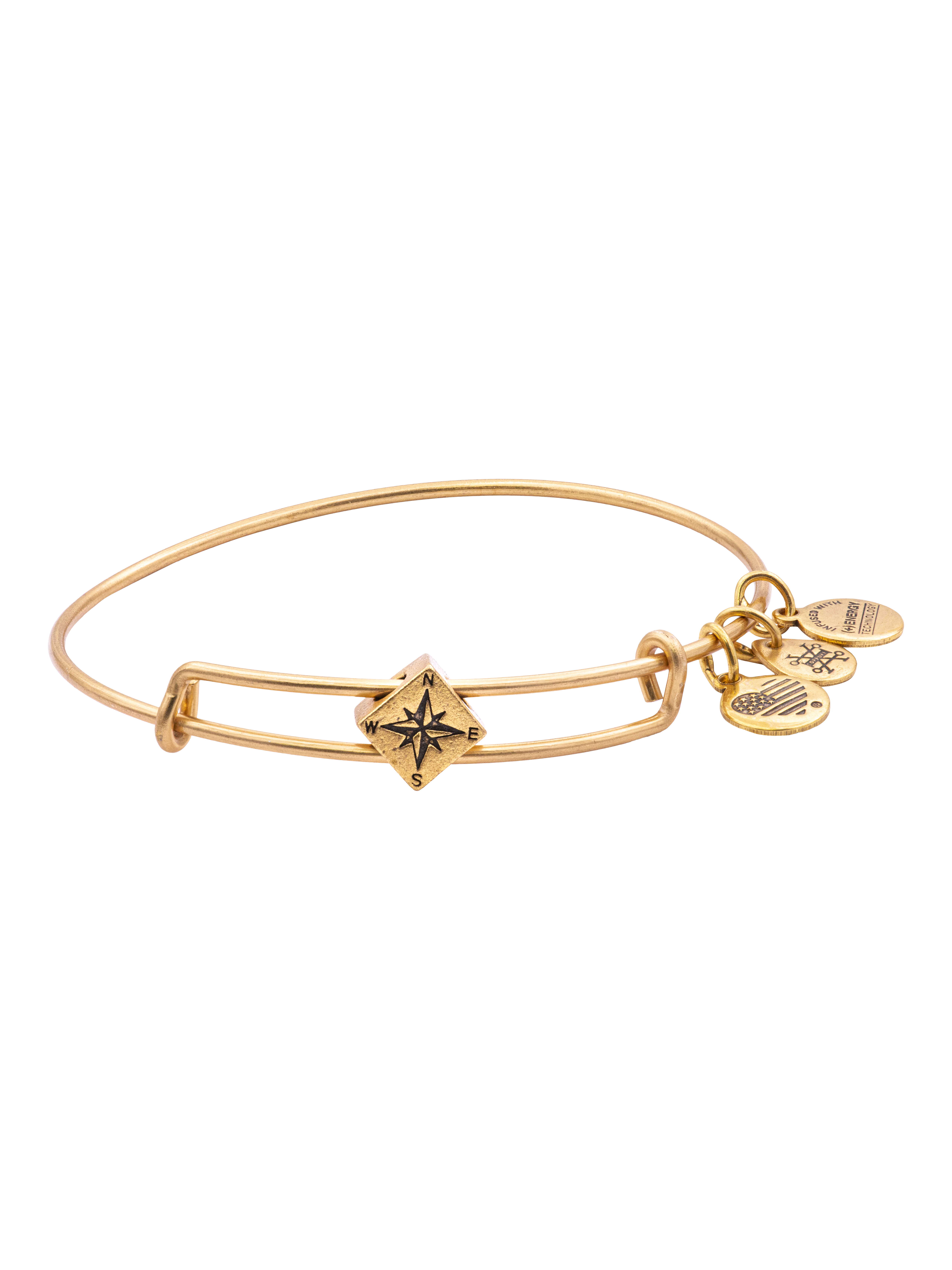 Alex and Ani A19EBCP02RG